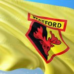 Flagge Watford FC